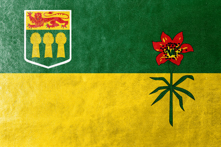 Flag of Saskatchewan Province, Canada, painted on leather texture