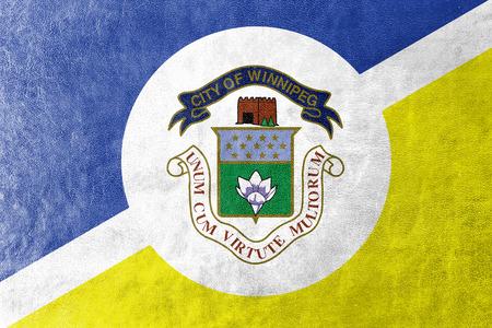 winnipeg: Flag of Winnipeg, Manitoba, Canada, painted on leather texture