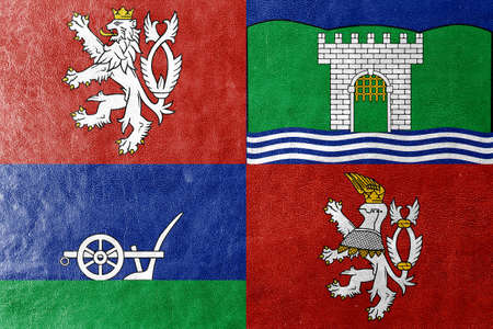 nad: Flag of Usti nad Labem Region, Czechia, painted on leather texture