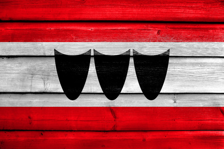 trebic: Flag of Trebic, Czechia, painted on old wood plank background