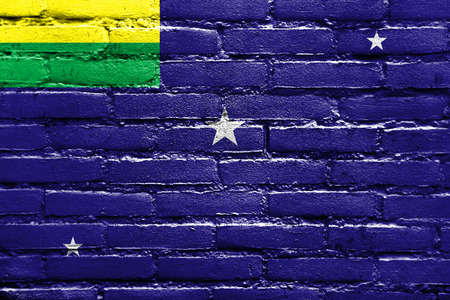 Flag of Lages, Santa Catarina State, Brazil, painted on brick wall