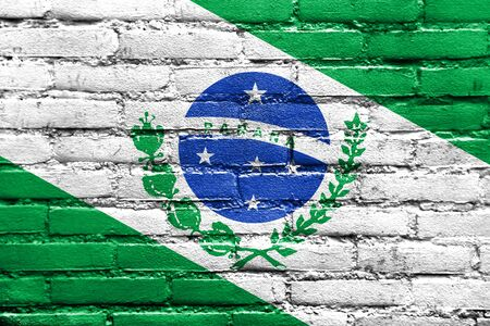 Flag of Parana State, Brazil, painted on brick wall Stock Photo