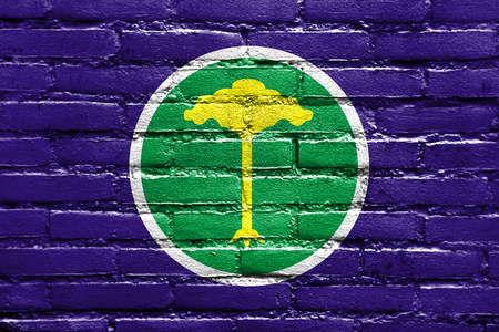 Flag of Sao Carlos, Sao Paulo, Brazil, painted on brick wall
