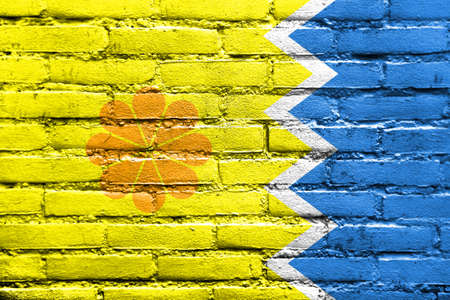 Flag of Vina del Mar, Chile, painted on brick wall