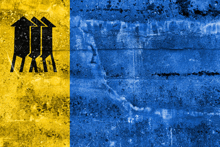 polity: Flag of Porto Velho, Rondonia, Brazil, painted on dirty wall