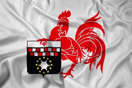 polity: Waving Flag of Charleroi, Belgium