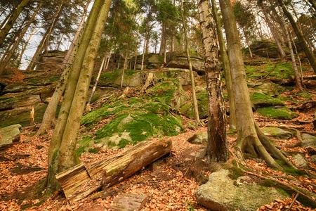 Karkonoski National Park, Szklarska Poreba, Poland