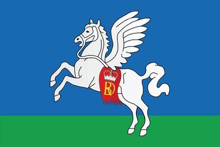 education policy: Flag of Sluck (Slutsk), Belarus. Vector Format