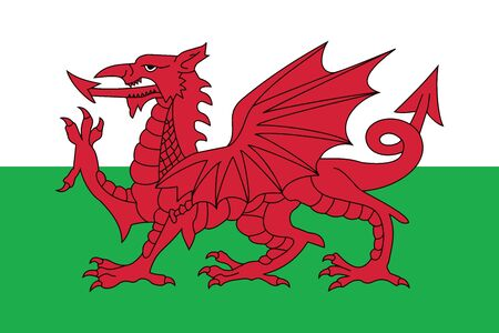 education policy: Flag of Wales, UK. Vector Format
