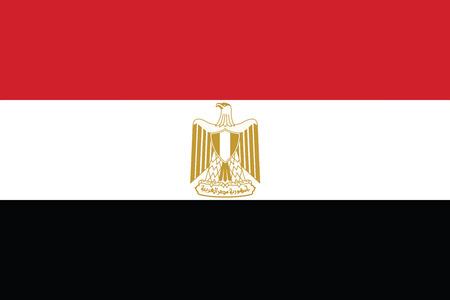 Egypt Flag. Vector Format