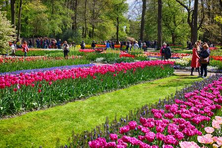 KEUKENHOF 정원,리스, 네덜란드 -2011 년 4 월 29 일 : 관광객 봄 꽃밭에서 꽃을 즐길 수 있습니다. 세계에서 가장 큰 꽃밭 중 하나입니다. 매년 7 백만 그루의