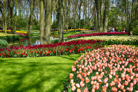 KEUKENHOF GARDEN, LISSE, NETHERLANDS - APR 29, 2017 : It is one of the worlds largest flower gardens. Over 7 million flower bulbs and one million visitors every year. Keukenhof Garden, Lisse, Netherlands - April 29, 2017. Editorial