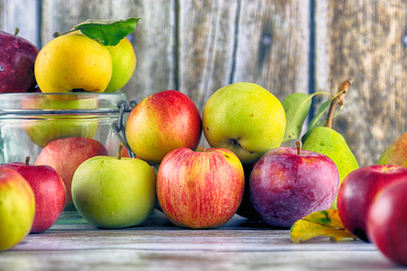 Fresh, real apples from organic farming, ecological harvest on wood background. Standard-Bild