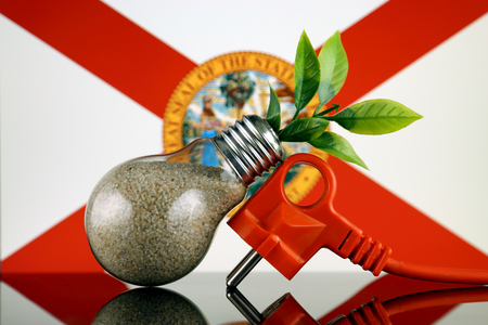 Plug, plant growing inside the light bulb and Florida State Flag. Green eco renewable energy concept.