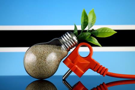 Plug, plant growing inside the light bulb and Botswana Flag. Green eco renewable energy concept.