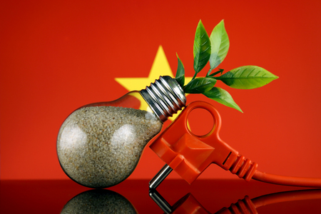 Plug, plant growing inside the light bulb and Vietnam Flag. Green eco renewable energy concept.