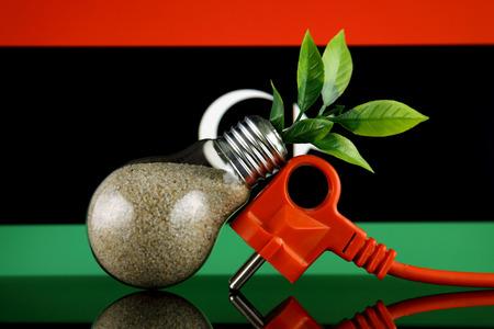 Plug, plant growing inside the light bulb and Libya Flag. Green eco renewable energy concept.