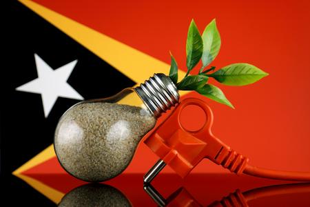 Plug, plant growing inside the light bulb and East Timor Flag. Green eco renewable energy concept.