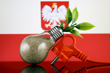 Plug, plant growing inside the light bulb and Poland Flag. Green eco renewable energy concept.