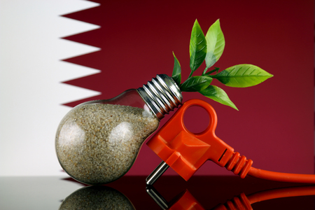 Plug, plant growing inside the light bulb and Qatar Flag. Green eco renewable energy concept. Stock fotó