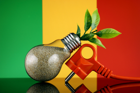 Plug, plant growing inside the light bulb and Mali Flag. Green eco renewable energy concept.