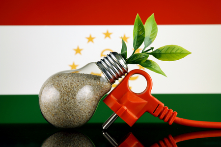 Plug, plant growing inside the light bulb and Tajikistan Flag. Green eco renewable energy concept. Stock fotó