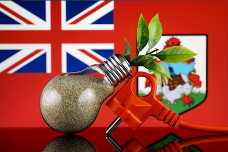 Plug, plant growing inside the light bulb and Bermuda Flag. Green eco renewable energy concept.