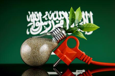 Plug, plant growing inside the light bulb and Saudi Arabia Flag. Green eco renewable energy concept.