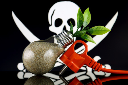 Plug, plant growing inside the light bulb and Pirate Flag. Green eco renewable energy concept. Risk, safety and security. Stock fotó