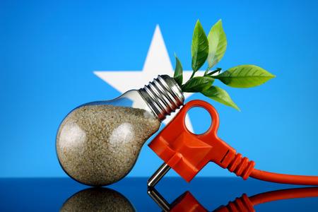 Plug, plant growing inside the light bulb and Somalia Flag. Green eco renewable energy concept.