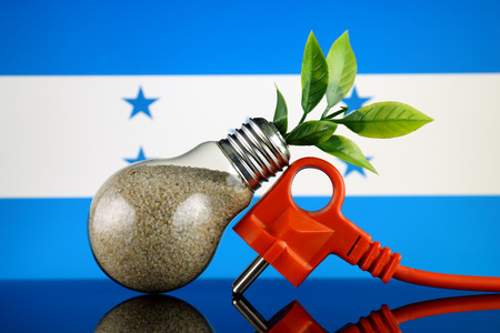 Plug, plant growing inside the light bulb and Honduras Flag. Green eco renewable energy concept.