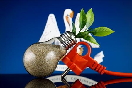Plug, plant growing inside the light bulb and Louisiana State Flag. Green eco renewable energy concept. Stock fotó