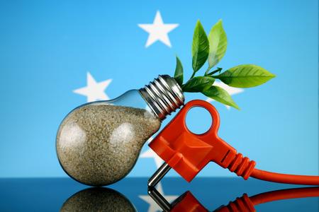 Plug, plant growing inside the light bulb and Micronesia Flag. Green eco renewable energy concept.