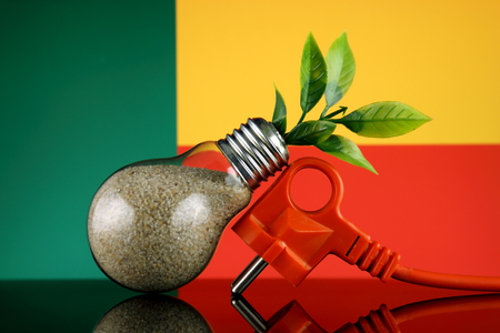 Plug, plant growing inside the light bulb and Benin Flag. Green eco renewable energy concept.