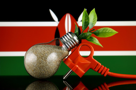 Plug, plant growing inside the light bulb and Kenya Flag. Green eco renewable energy concept.