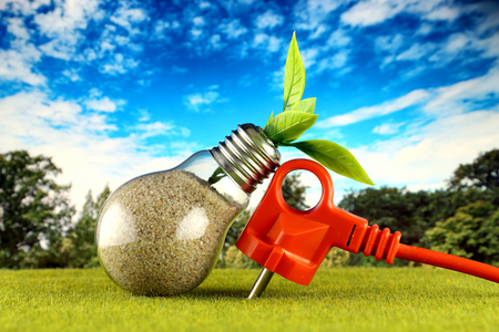 Plug and plant growing inside the light bulb with field and blue sky background. Eco renewable energy concept. Electricity prices, energy saving in the household.