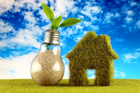 Plant growing inside the light bulb and green house icon with field and blue sky background. Eco renewable energy concept. Electricity prices, energy saving in the household.