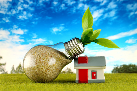 Plant growing inside the light bulb and miniature house with field and blue sky background. Eco renewable energy concept. Electricity prices, energy saving in the household.