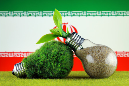 Green eco light bulb with grass, plant growing inside the light bulb, and Iran Flag. Renewable energy. Electricity prices, energy saving in the household.