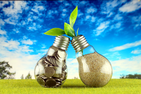 Coins inside the light bulb on the grass and plant growing inside the light bulb with blue sky background. Green eco renewable energy concept. Electricity prices, energy saving in the household. Stock fotó