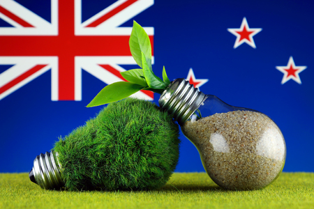 Green eco light bulb with grass, plant growing inside the light bulb, and New Zealand Flag. Renewable energy. Electricity prices, energy saving in the household.