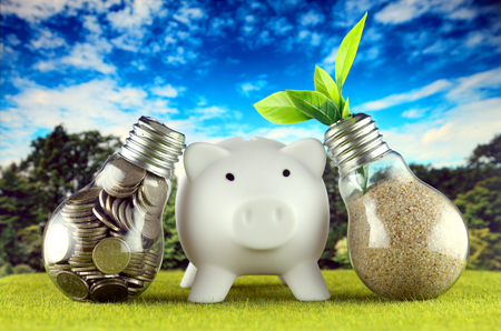Coins inside the light bulb, plant growing inside the light bulb and piggy bank. Green eco renewable energy concept. Electricity prices, energy saving in the household.