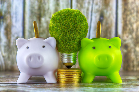 Piggy banks, green eco light bulb with grass and golden coins on wooden background. Renewable energy concept. Electricity prices, energy saving in the household. Stock Photo