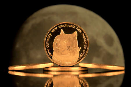 A physical version of Dogecoin (Cryptocurrency). A conceptual image for investors in the fast-growing cryptocurrency and blockchain technology market.