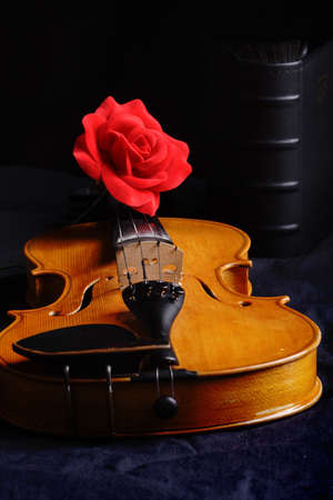 Musical background � instruments. Shot in studio. photo