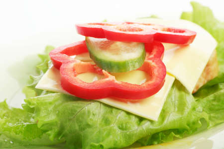 Fresh Vegetables - fast food foodstuffs. Shot in a studio.  photo