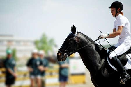 carreras de caballos: Caballo tema: jinetes, carreras de caballos, la velocidad.