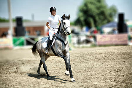 trained: Horse theme: jockeys, horse races, speed.