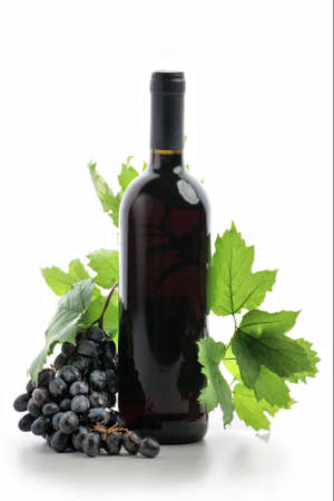 bottle of wine: Wine composition: vine and bottle of wine Stock Photo