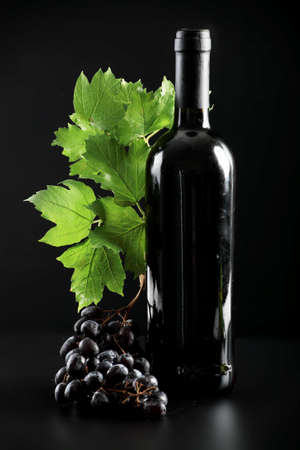 bocal: Wine composition: vine and bottle of wine Stock Photo